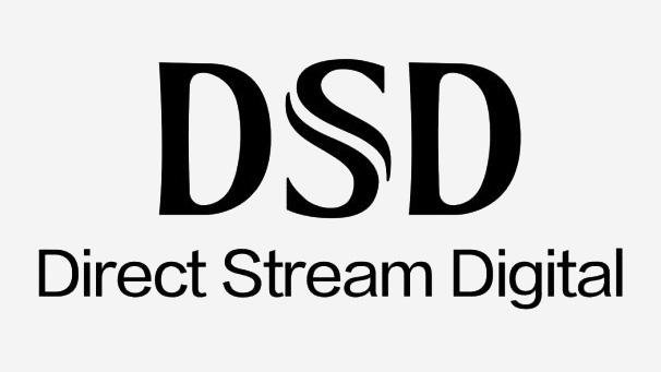 EWEAT Digital audio player DMP50 DSD